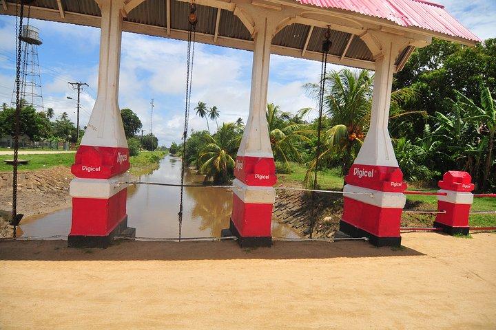 Saramacca and Coronie Full-Day Tour with Lunch, Paramaribo, SURINAM