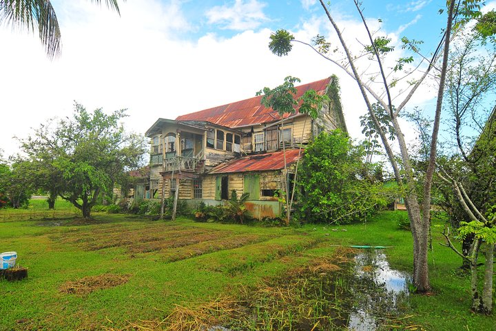 Full-Day Guided Commewijne Plantation Tour by Car, Paramaribo, SURINAM
