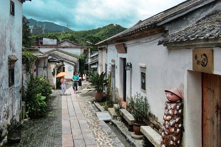 Cruise Excursion Day Trip in Shenzhen: Dongmen Old Street, Dapeng Old City etc., Shenzhen, CHINA