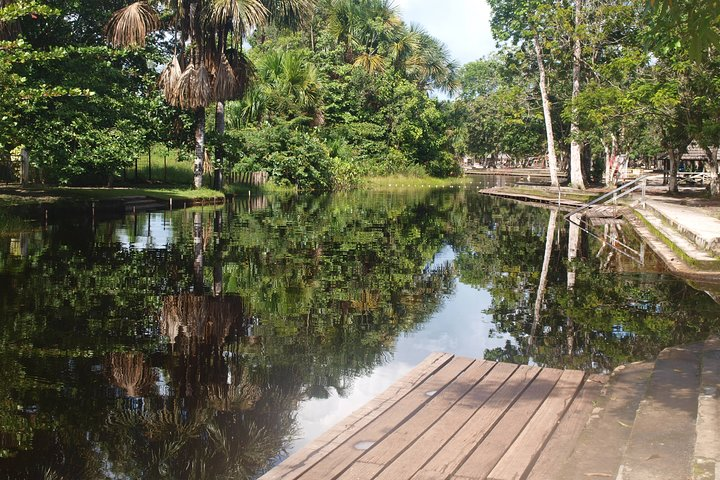 Neotropical Butterfly Park and Colakreek Full-Day Tour, Paramaribo, SURINAM