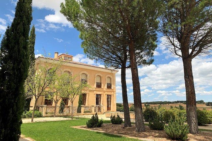 Recorrido vinícola Premium en Ribera del Duero con almuerzo y recogida en el hotel, Madrid, ESPAÑA