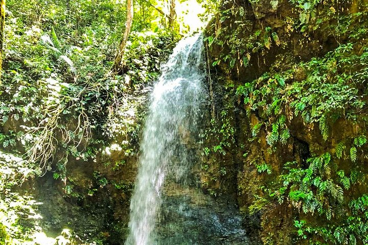 2 Days Shared Tour in Brownsberg and Ston Island, Paramaribo, SURINAM