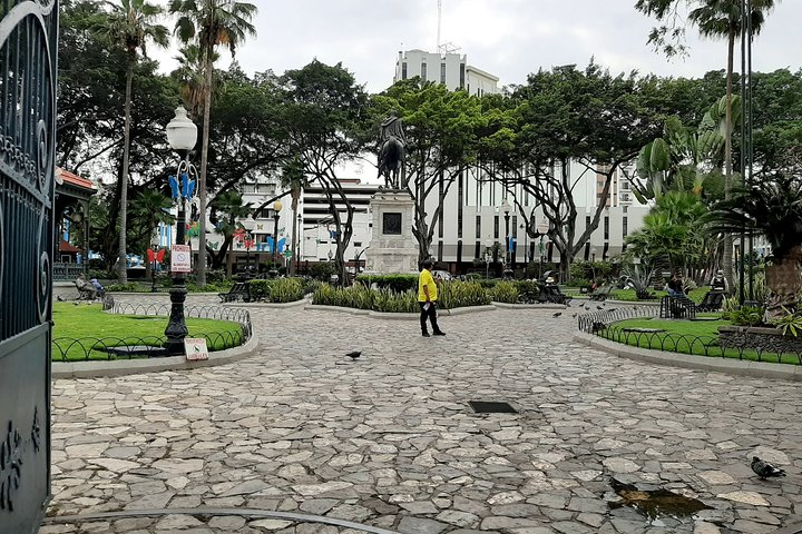 Night Tour in Guayaquil with Drinks at FrutaBar, Guayaquil, ECUADOR
