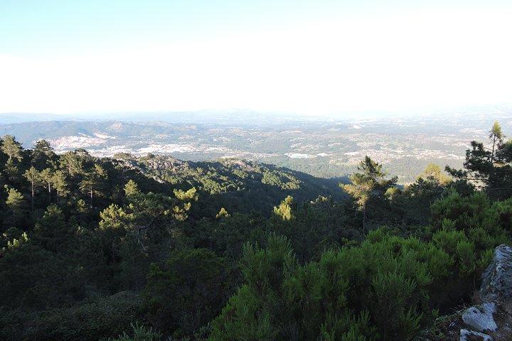 Visita Guiada a Pie a la Muralla ciclópea en Monte Aloia Tui, Vigo, ESPAÑA