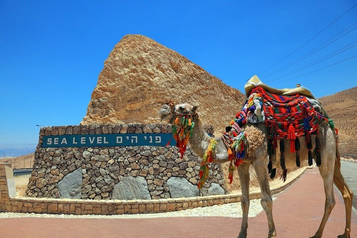 Private Tour: Masada and Dead Sea Day Trip from Jerusalem, Jerusalen, ISRAEL