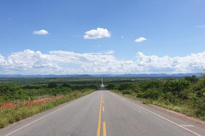 Ivan Bahia: Private Transfer Tree Bies (Subauma) <-> Lençois - ChapadaDiamantina, ,