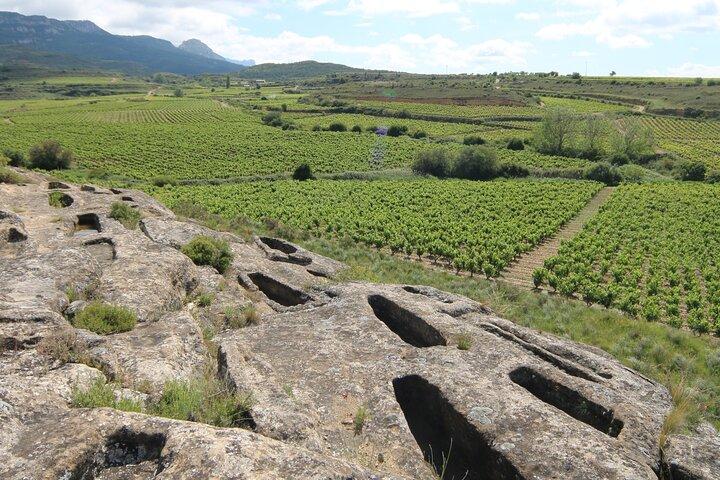 Recorrido Privado por viñedos de San Vicente de la Sonsierra, La Rioja, ARGENTINA