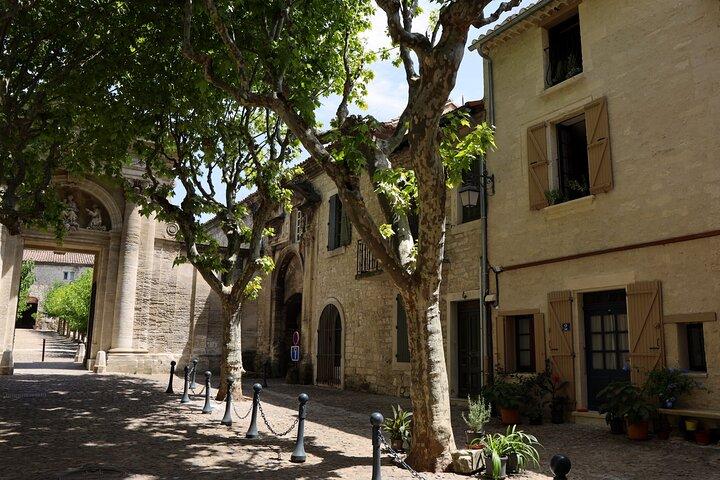 Pont du Gard to Villeneuve Les Avignon & Châteauneuf du Pape wine private tour, Avignon, FRANCIA