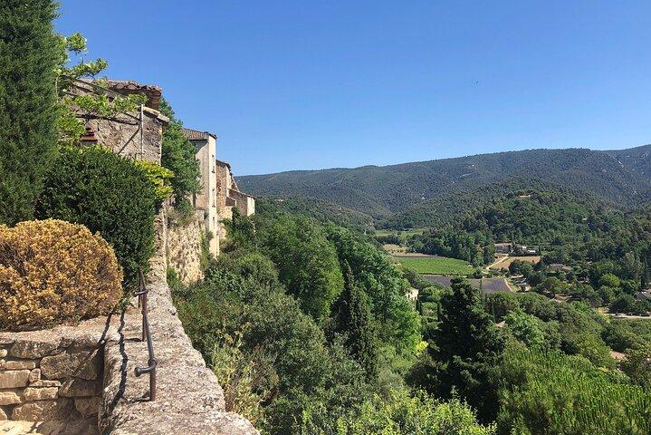 Avignon & the tiny villages of the Vaucluse to L'Isle sur la Sorgue private tour, Avignon, FRANCIA