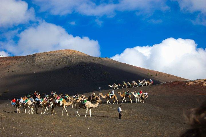 Private 4-hour Tour to the National Park of Timanfaya with Camel Ride, Arrecife, Espanha