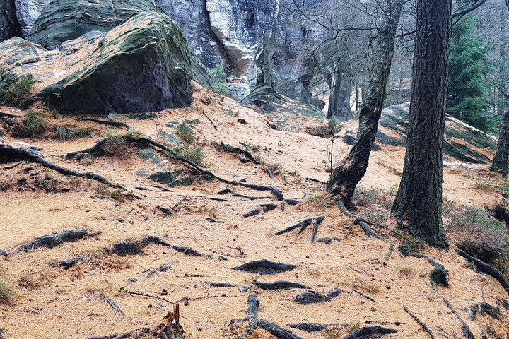 Best of Bohemian and Saxon Switzerland Day Trip from Dresden- Fantasy Tour, Dresden, GERMANY