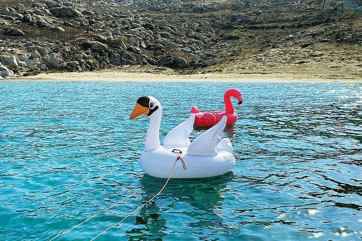 Excursión en Barco a Isla de Rhenia con Parada para Nadar, Miconos, GRECIA