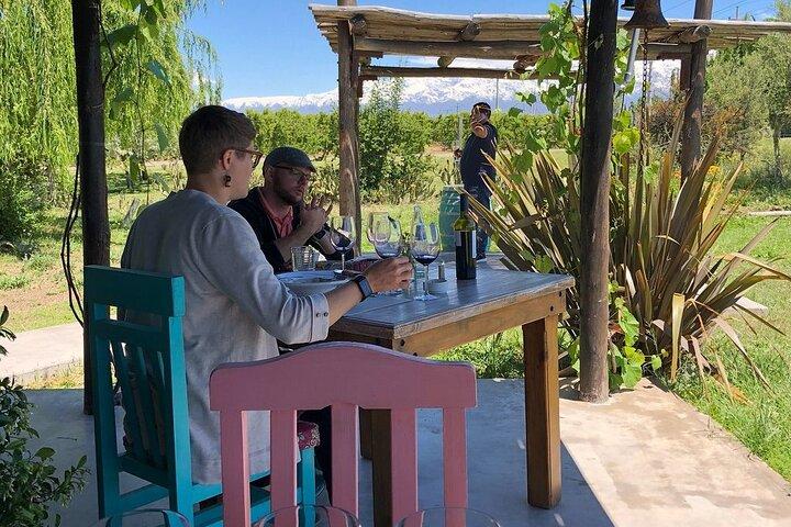 Tour privado: vinícola Mendoza com motorista e guia, Mendoza, ARGENTINA