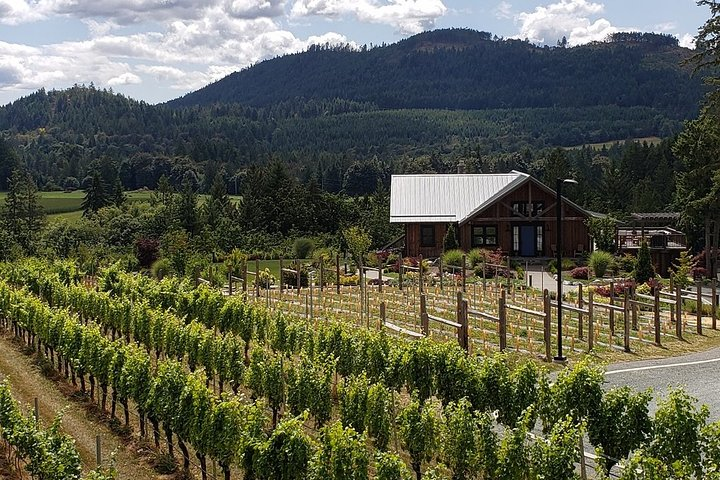 Half-Day Victoria to Cowichan Valley Wine Tour with Tastings, Isla de Vancouver, CANADA