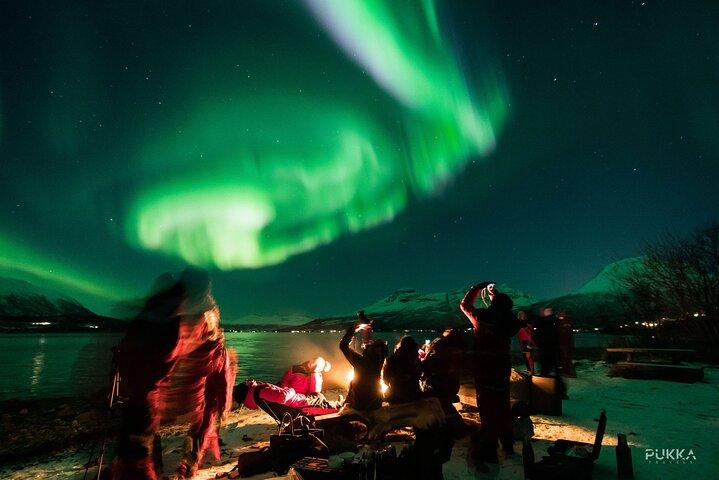 Northern Lights x Mini Bus Chase, Tromso, NORUEGA