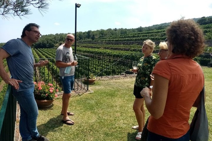 Private 6-Hour Tour of Three Etna Wineries with Tasting, Catania, ITALIA