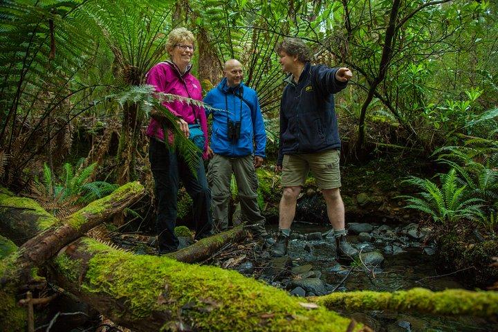 Bruny Island Traveller - Gourmet Tasting and Sightseeing Day Trip from Hobart, Hobart, AUSTRALIA
