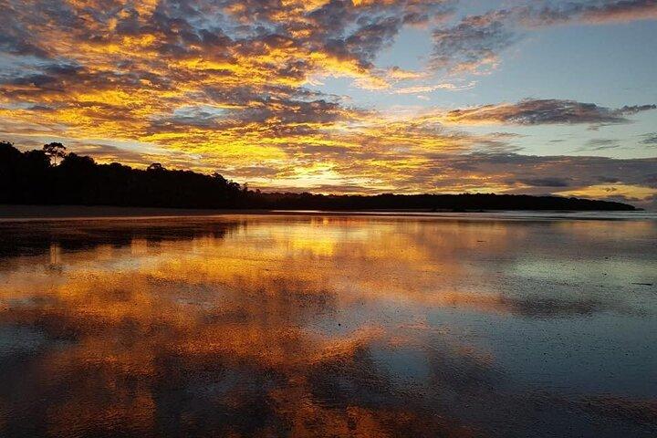 Overnight In Sirena, Corcovado From Puerto Jimenez, Puerto Jimenez, COSTA RICA