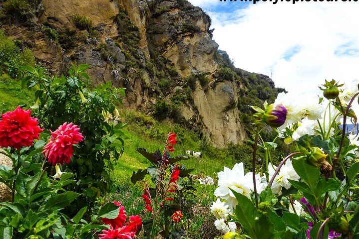 Full-Day Ingapirca Ruins and Gualaceo Artisan Village, Cuenca, ECUADOR