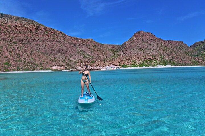 Excursão de dia inteiro para mergulho com snorkel e paddleboard na Ilha de Espiritu Santo, La Paz, MÉXICO