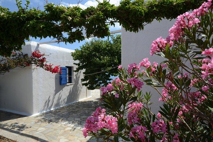Private Island Tour, Miconos, GRECIA