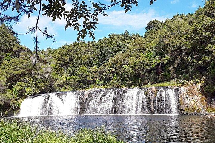Private Tour: Full-Day Bay of Islands Tour, Bahia de Islas, NUEVA ZELANDIA