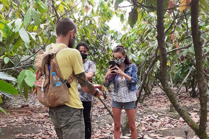 Tour Chocolate y Cacao - Experiencia en Hacienda Agroturistica, Guayaquil, ECUADOR