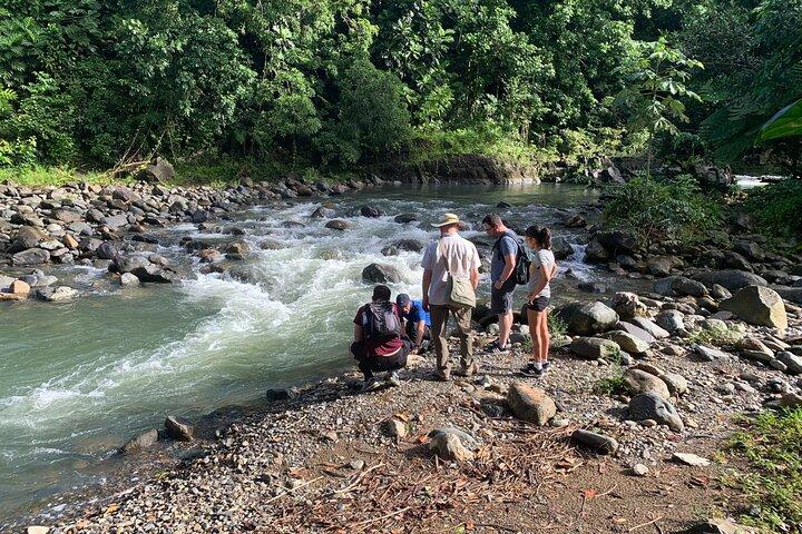 Rainforest River Adventure and Luquillo Beach Combo, Fajardo, PUERTO RICO