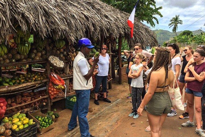 Samana Ballenas Tours, Punta de Cana, REPUBLICA DOMINICANA