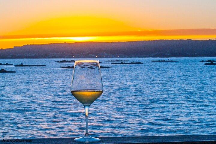 Albariño trails Private Wine Tour/Shore excursion from Vigo, Vigo, ESPAÑA