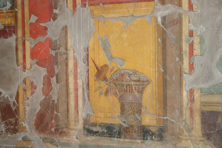 Private tour in Roman Oplontis and Stabia, with wine tasting on Mt Vesuvius, Naples , ITALY