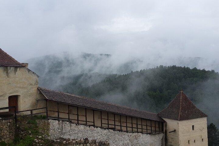 Libearty Brown Bear Sanctuary, Rasnov Fortress, Bran Castle Day Tour From Brasov, Brasov, ROMÊNIA