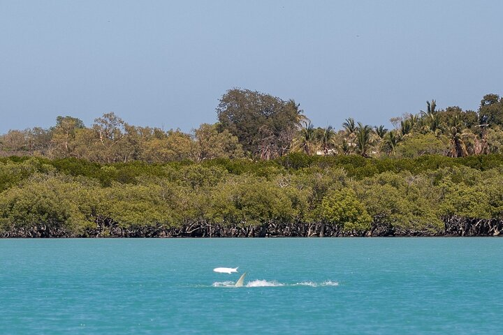 Scenic and Prehistoric Boat Tour, ,