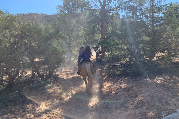 Ruby's Horseback Adventures Utah Half Day Ride, ,