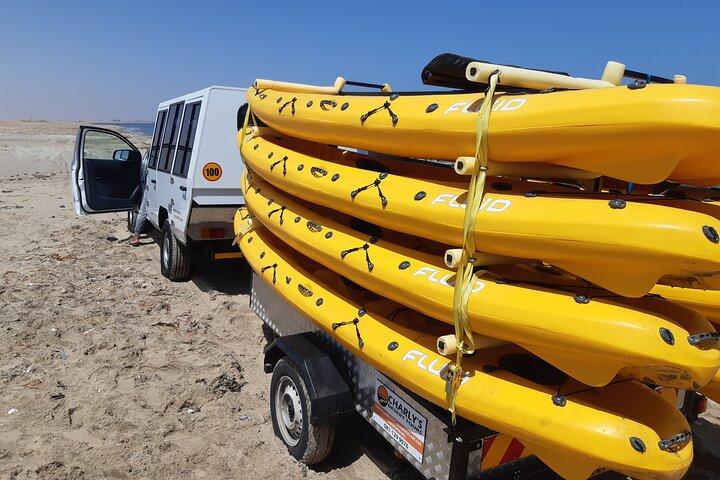 Kayaking Adventure at Bird Rock, Swakopmund, NAMIBIA