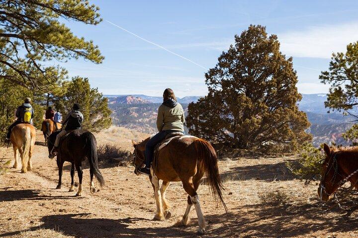 Ruby's Horseback Adventures Utah 1.5 Hour Ride, ,