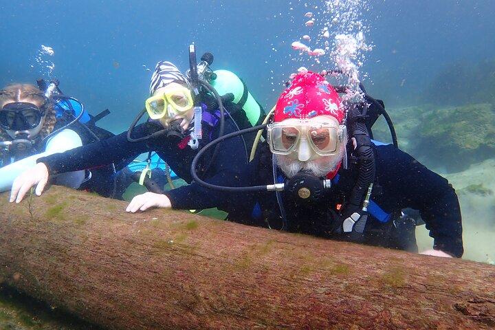 SCUBA Diving Lesson in Crystal River (Rainbow River Dive), Crystal River, FL, ESTADOS UNIDOS