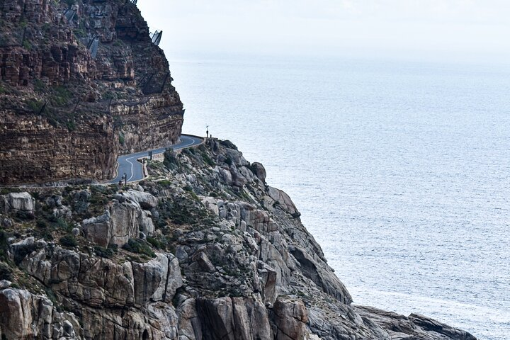 Cape of Good Hope and Penguins Full-Day Tour From Cape Town, Cape Town, South Africa