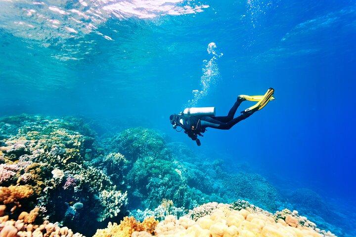 Scuba Diving in Side, Side, TURQUIA