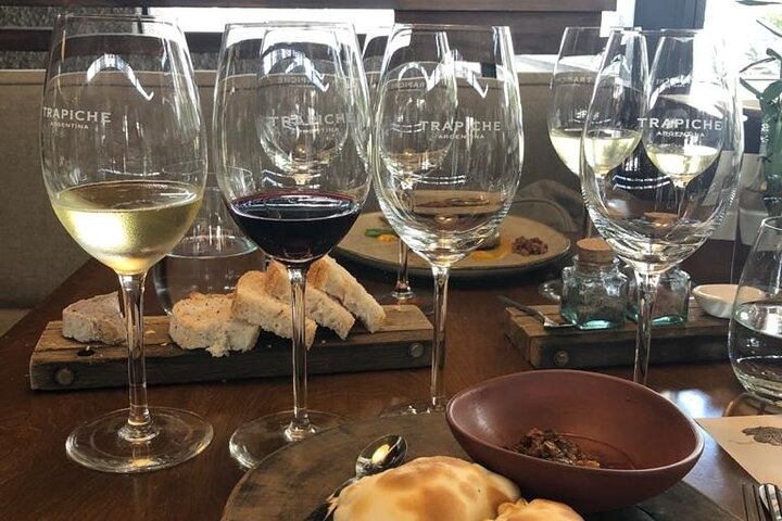 Mendoza wine tasting full day tour with lunch or dinner, Mendoza, ARGENTINA