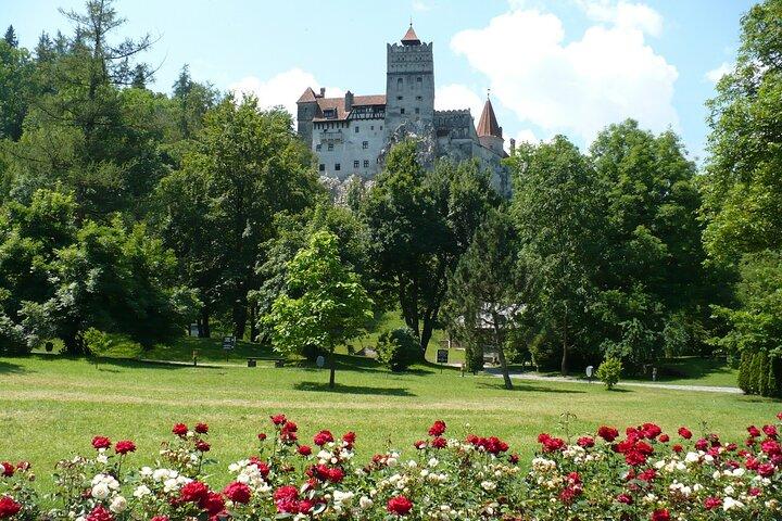 Castles Day Tour Peles - Bran - Rasnov from Brasov, Brasov, RUMANIA