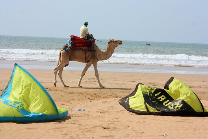 Let's ride downwind with a local!, Esauira, MARRUECOS