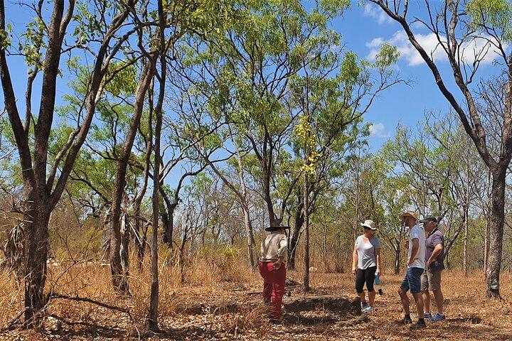 World War II Beyond Darwin, Darwin, AUSTRALIA