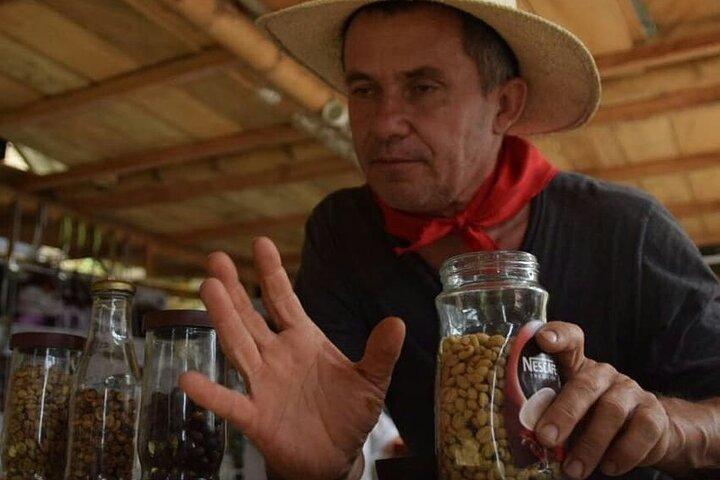 Coffee Tour in Medellin, Medellin, COLOMBIA