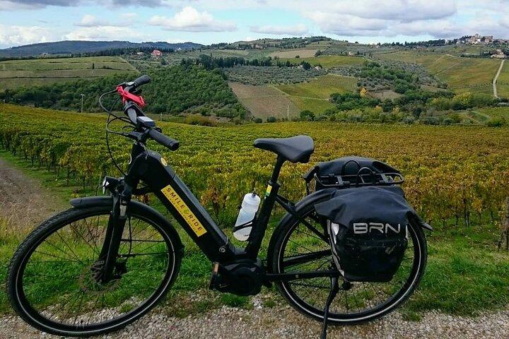 Pisa E-bike Tour, Pisa, ITALIA