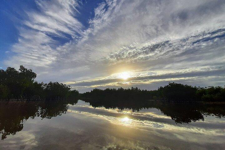 Kayak the Everglades Mangrove Forest and Marsh Prairies with Wildlife Viewing!, Naples, FL, ESTADOS UNIDOS