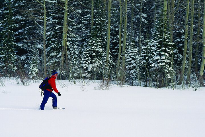 Snowshoe Rental at Tremblant, Mont-Tremblant, CANADÁ