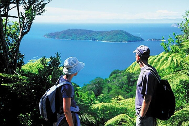 Full Day Queen Charlotte Kayak and Walking Tour from Picton, Picton, New Zealand