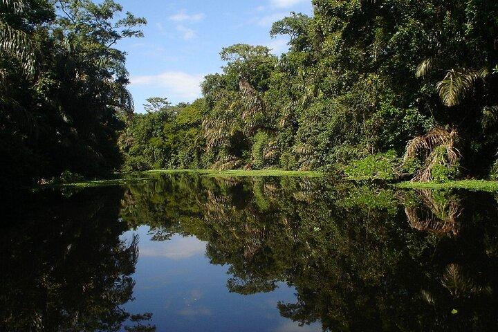 Paquete Tortuguero 2 días 1 noche, San Jose, COSTA RICA