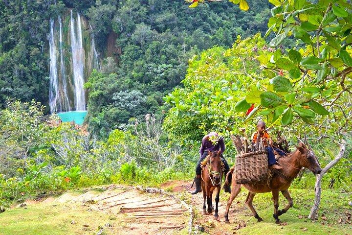 Samana El Limon Waterfall e Island Bacardi Full-Day desde BAVARO, PUNTA CANA, ,